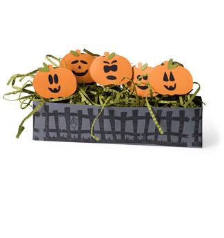 Pumpkin suckers
